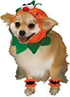 Rubies Costume Halloween Classics Collection Pet Costume, Small, Pumpkin Headpiece with Cuffs by Rubies Decor