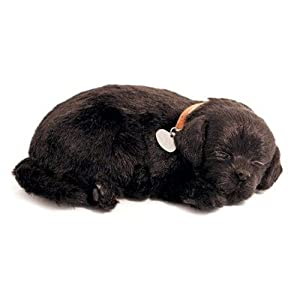 Sunline Lifelike Black Lab Soft Toy That Can Breathe, Ages 3 & Up at Sears.com