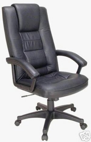 Big&tall Leather Task Computer Office Desk Chair W/ergonomic Padded Arms -Senator