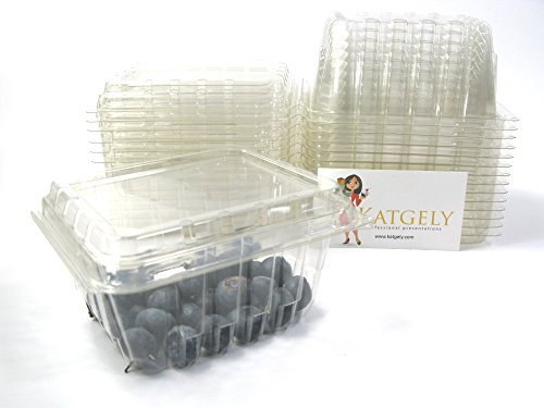 Vented Plastic Berry Containers