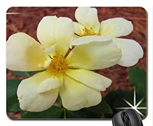 Yellow Knock-out Rose Mouse Pad, Mousepad (Flowers Mouse Pad)