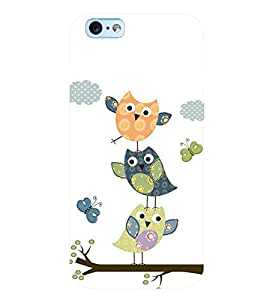 printtech Colorful Birds Back Case Cover for Apple iPhone 6
