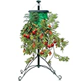 Topsy Turvy Deluxe Hanging Tomato, Fruit & Flower Tree Stand With Watering Cane- As Seen On TV
