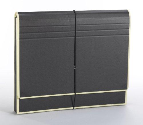 Semikolon A4 12-Pocket Accordion File, Letter Size, Black (26707)