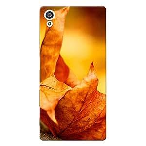 Mobile Back Cover For Sony Xperia Z5 (Printed Designer Case)