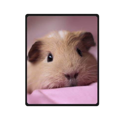 Soft Cute Animals Pig Guinea Pig 40