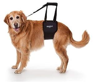 Amazon Com Gingerlead Dog Rear Lift Harness Lg Female