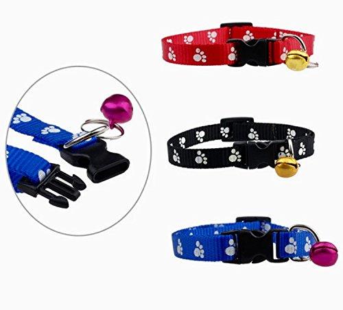 pfotenhalsband-fur-hund-katze-20-31-cm-mit-glockchen-in-3-farben-schwarz-blau-rot-katzenhalsband-hun