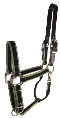 Hamilton 1-Inch 3-Stripe Fashion Adjustable Nylon with Leather Head Poll and Brass Snap Horse Halter, 800 to 1100-Pound, Moss Green