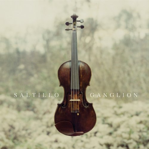 ganglion-extra-tracks-edition-by-saltillo-2011-audio-cd
