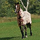 Horseware Mio Fly Rug-Bronze/Red – 6'0″