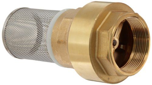 Dixon bvfs brass hose fitting strainer with spring