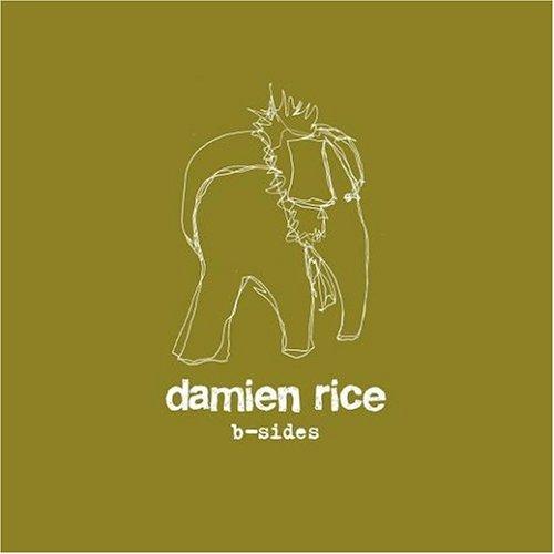 Damien Rice - B Sides - Zortam Music