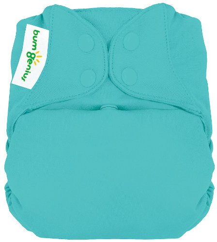 Bumgenius Freetime All In One Cloth Diaper - Snap - Mirror, Size One Size front-873567