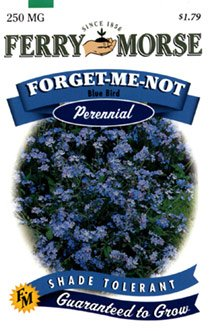 Ferry-Morse Perennial Flower Seeds 1050 Forget-Me-Not Blue Bird 250