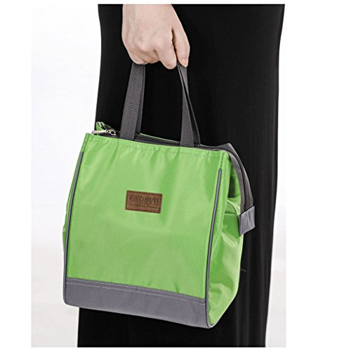 Food To Carr When Travelling: C.A.Z Thermal Travel Picnic Portable Tote Waterproof