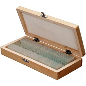 AmScope 50pc Home School Student Biology Science Glass Slide Microscope Prepared Slides in Wooden Box