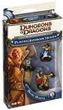 Divine Heroes (Player's Handbook Heroes Series 1)