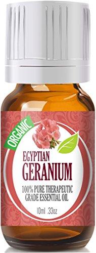 Geranium Egypt (Organic) 100% Pure, Best Therapeutic Grade Essential Oil - 10Ml