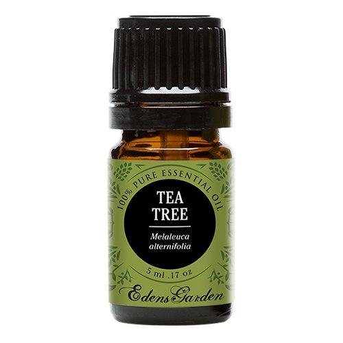 Tea Tree (Melaleuca) 100% Pure Therapeutic Grade Essential Oil by Edens Garden- 5 ml