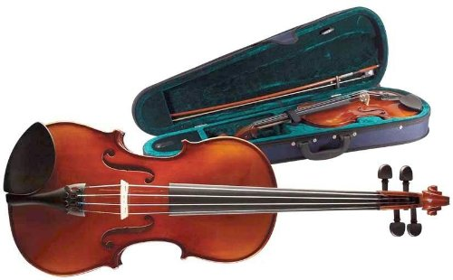 Stagg Stagg Vn 4/4 Autres instruments Violons