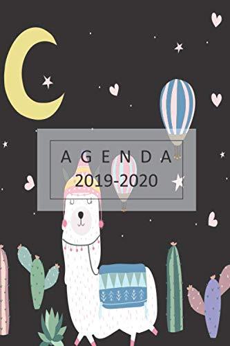 agenda 2019-2020 planificador 2019-2020 del 1 de julio del 2019 al 31 de diciembre del 2020 diario semanal mensual lindo diseño de una llama  [mujer, agenda] (Tapa Blanda)