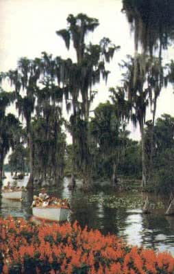 Cypress Gardens Florida Postcard At Amazon 39 S Entertainment