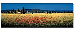 Tuscan Panorama by David Short Custom Gallery-Wrapped Canvas Giclee Art (Ready to Hang)