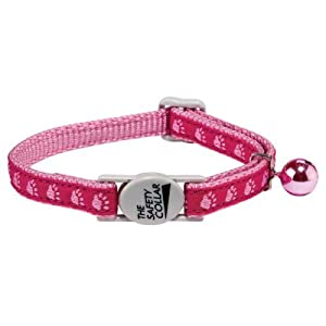 Kitty Two-Tone Pawprint Pet Collar Color