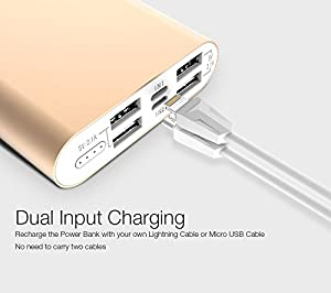 LAX Pro Portable Charger Battery Backup, 16800mAh External Battery with Dual Input via Micro USB or Lightning Cable and 4 High Speed Charging Ports for iPhone, Samsung, and Other Devices (Silver) (Color: Silver)