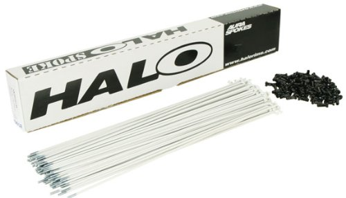 Halo Aura spoke, white 14g - box/100 258mm