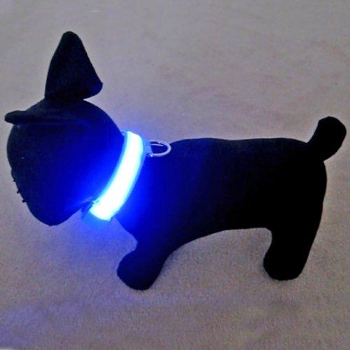 Alfie Pet - Blauw Flashing Pet Safety Collar - Collar Color: Baby Blue, Led Light Color: Blue, Size: M