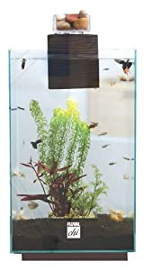 Fluval Chi Aquarium Kit with Canopy Lid, 6.6-Gallon