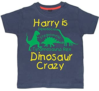 PERSONALISED DINOSAUR CRAZY T-SHIRT WITH NAME' 2-3 years Washed Navy T-shirt with green and yellow print