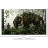 "Blusens H324W24A LED TV - Televisor (60,96 cm (24""), Full HD, 1920 x 1080 Pixeles, Analógico y Digital, DVB-T, 6W) Color blanco"