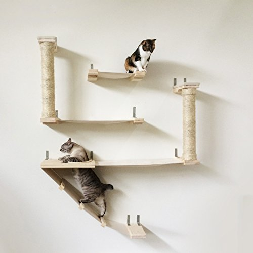 catastrophicreations the roman cat fort   cat hammock  u0026 climbing activity center   handcrafted wall  cool cat tree plans  cat shelves  rh   coolcattreeplans