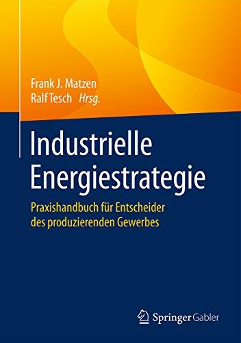 industrielle-energiestrategie-praxishandbuch-fur-entscheider-des-produzierenden-gewerbes