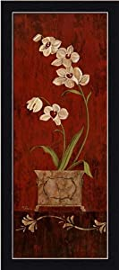 Orchid Allure II by Maria Donovan Asian Floral Still life Art Print Framed Picture
