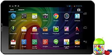 Micromax Funbook Duo P310