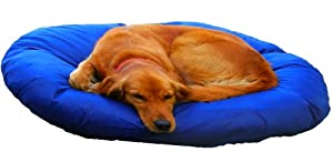 Large (8 Sheets) - Kleen Sheets Disposable Pet Bed and Upholstery Covers - Now $19.99 by Kleen Pet Products, LLC