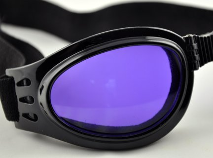 Purple Lens Goggles Sunglasses Goth Anime Cosplay Biker