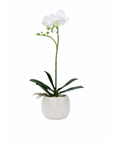 Lux-Art Silks Small Orchid In White Container