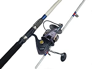 Surf Rod and Saltwater Spinning Reel Combo