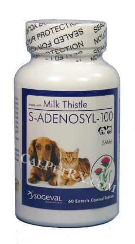 S-adenosyl