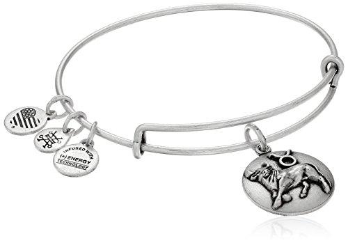 alex-and-ani-taurus-rafaelian-silver-bangle-bracelet