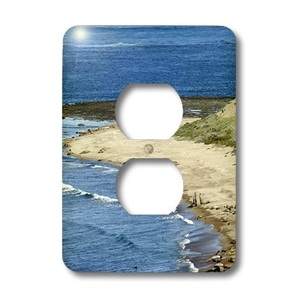 Lsp_85381_6 Danita Delimont - Seals - Argentina, Elephants Seals Fight For Harem - Sa01 Mme0160 - Michele Molinari - Light Switch Covers - 2 Plug Outlet Cover