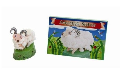 Tedcotoys School Children Activity Sheep