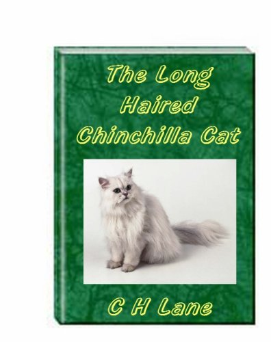 The Long Haired Chinchilla Cat