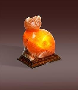 Salt Lamps Cats : Amazon.com: Evolution Himalayan Crystal Salt Lamp, Cat Shape (4-6 lbs): Health & Personal Care