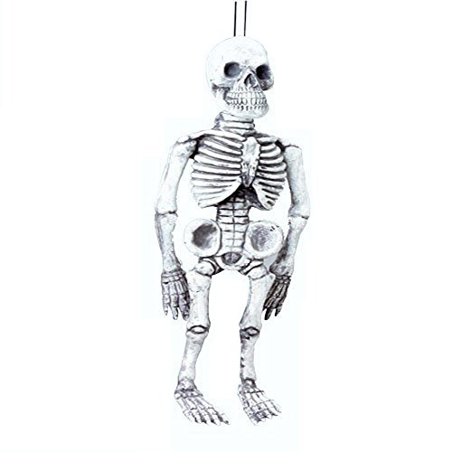 "17"" Skeleton with Dangler - Halloween Decoration"